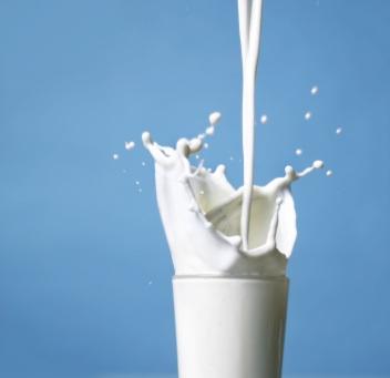 296 bambini malati per il latte cinese