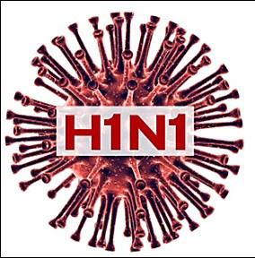 Altre due vittime del virus H1N1